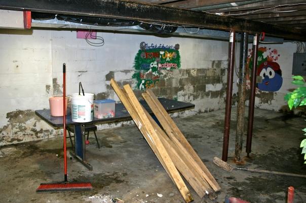 The Moldy Basement
