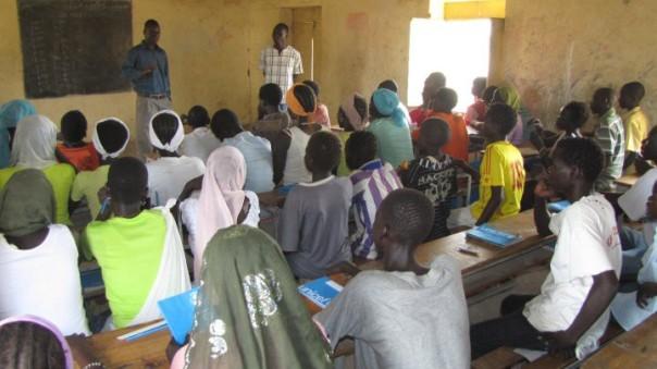 Liasor teaching